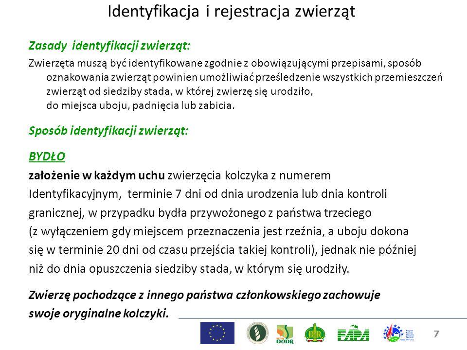 7 Identyfikacja i rejestracja zwierząt Zasady identyfikacji zwierząt: Zwierzęta muszą być identyfikowane zgodnie z obowiązującymi przepisami, sposób o