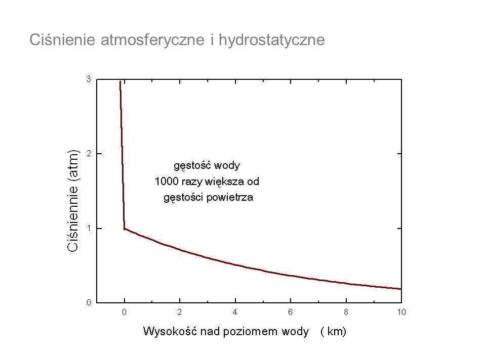 Prawo naczyń połączonych W jednorodnej cieczy ciśnienie na jednym poziomie jest jednakowe; liczymy rurki U –porównujemy ciśnienia słupów cieczy na ciecz jednorodną