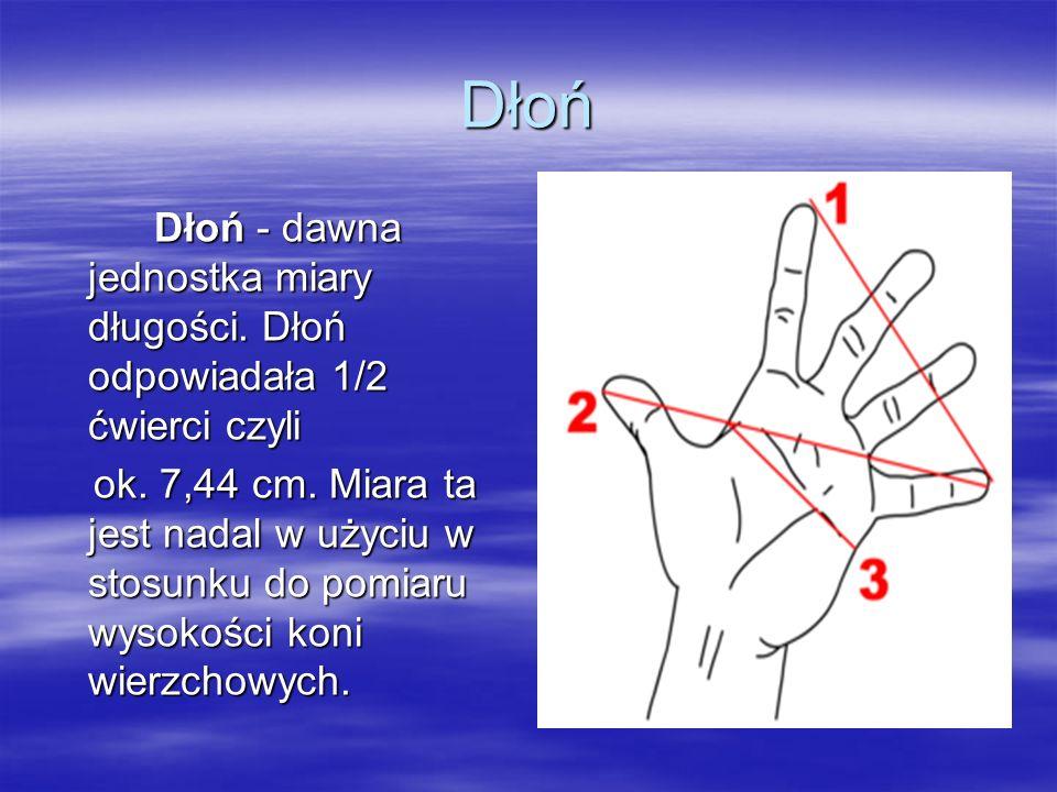 Dłoń Dłoń - dawna jednostka miary długości. Dłoń odpowiadała 1/2 ćwierci czyli ok. 7,44 cm. Miara ta jest nadal w użyciu w stosunku do pomiaru wysokoś