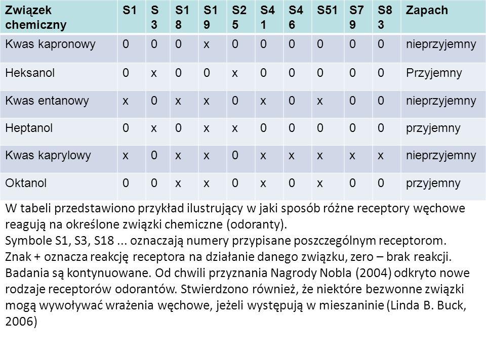 W tabeli przedstawiono przykład ilustrujący w jaki sposób różne receptory węchowe reagują na określone związki chemiczne (odoranty). Symbole S1, S3, S