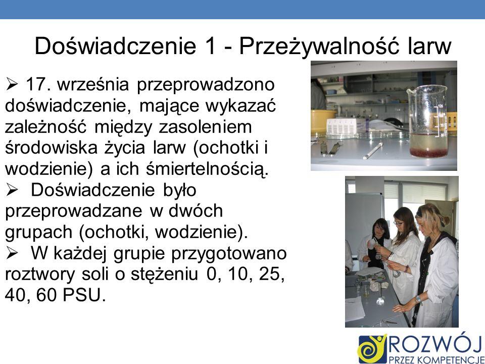 Doświadczenie 1 - Przeżywalność larw 17.