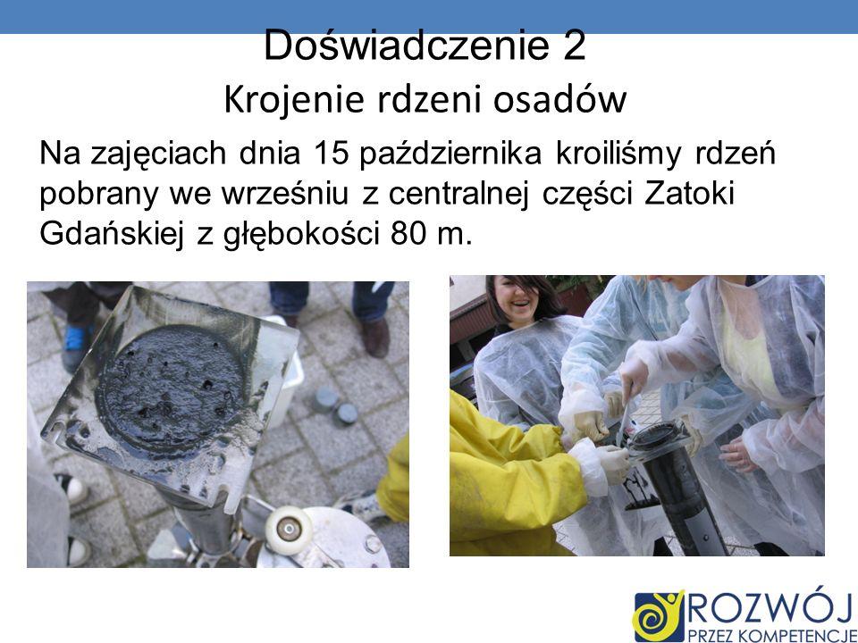 Do krojenia używaliśmy wyciskacza do rdzeni, nożyka, którym kroiliśmy rdzeń, plastikowej łyżeczki, którą umieszczaliśmy pokrojony rdzeń w plastikowych torebeczkach (musieliśmy pamiętać o tym, żeby nie zanieczyścić próbki).