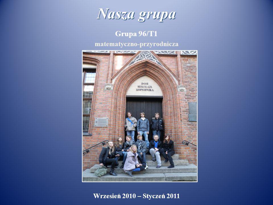 Nasza grupa Grupa 96/T1 matematyczno-przyrodnicza Wrzesień 2010 – Styczeń 2011