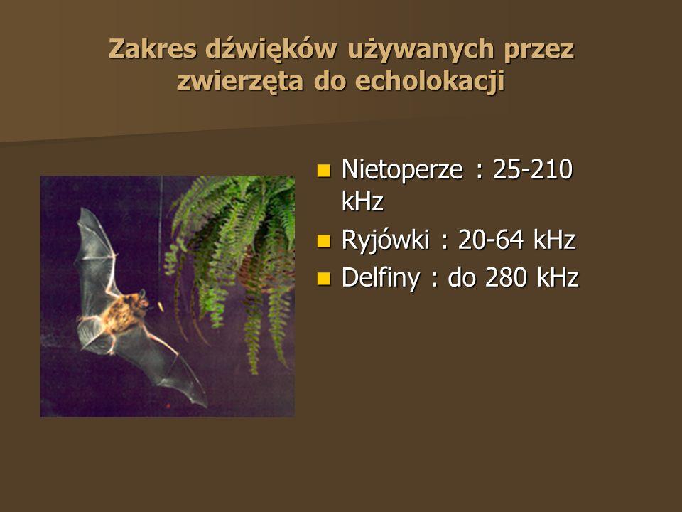 Zakres dźwięków używanych przez zwierzęta do echolokacji Nietoperze : 25-210 kHz Nietoperze : 25-210 kHz Ryjówki : 20-64 kHz Ryjówki : 20-64 kHz Delfi