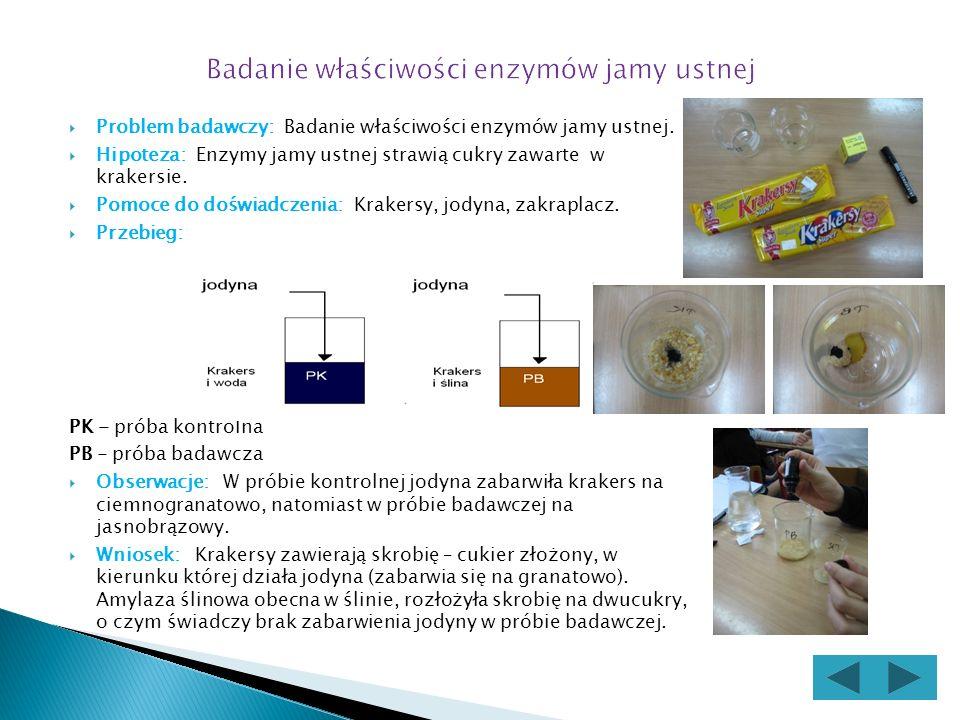 Problem badawczy: Badanie właściwości enzymów jamy ustnej.
