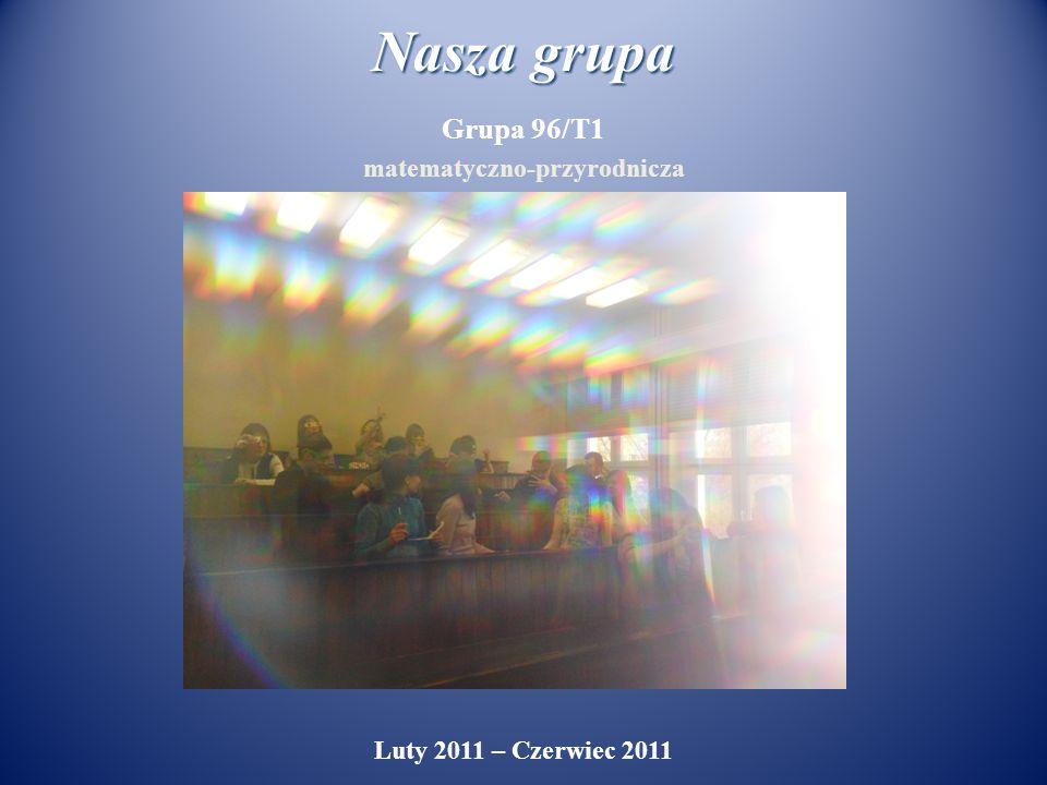 Nasza grupa Grupa 96/T1 matematyczno-przyrodnicza Luty 2011 – Czerwiec 2011