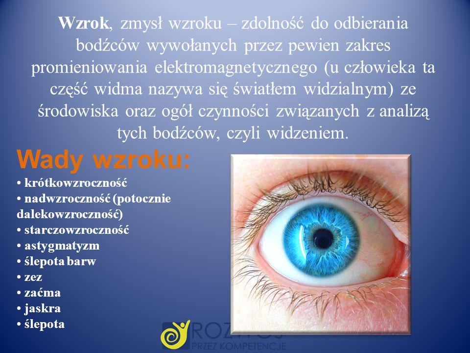 Wzrok, zmysł wzroku – zdolność do odbierania bodźców wywołanych przez pewien zakres promieniowania elektromagnetycznego (u człowieka ta część widma na