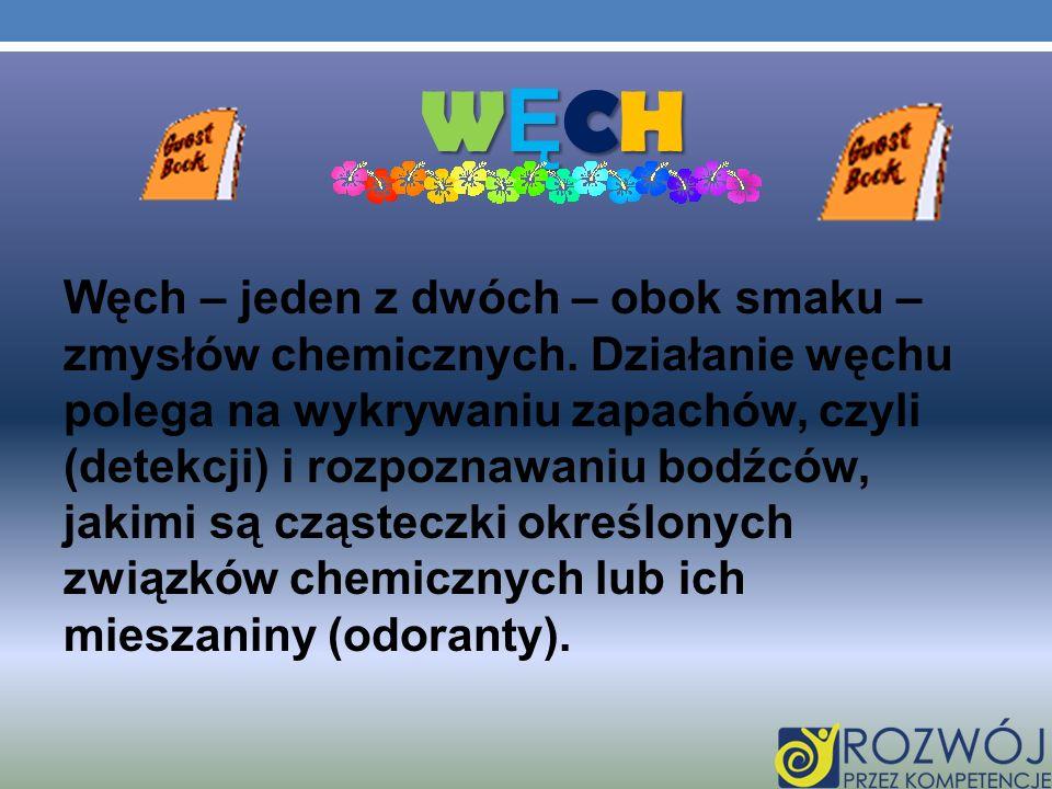 WĘCHWĘCHWĘCHWĘCH Węch – jeden z dwóch – obok smaku – zmysłów chemicznych. Działanie węchu polega na wykrywaniu zapachów, czyli (detekcji) i rozpoznawa