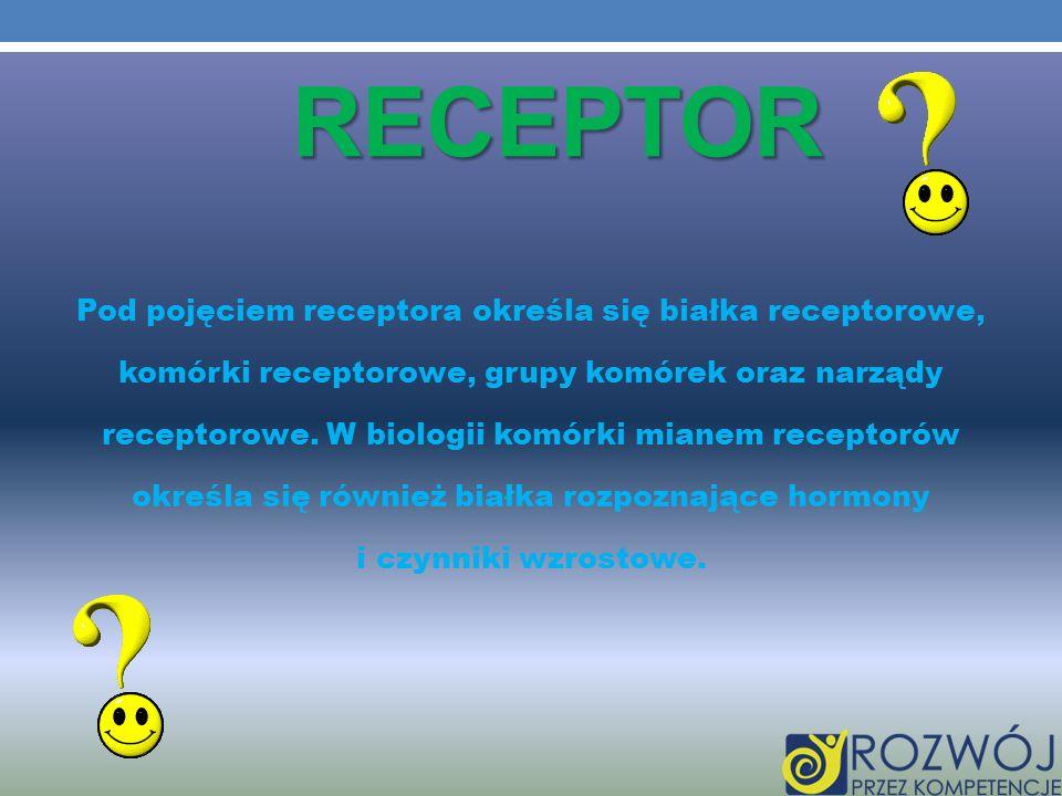 RECEPTOR Pod pojęciem receptora określa się białka receptorowe, komórki receptorowe, grupy komórek oraz narządy receptorowe. W biologii komórki mianem