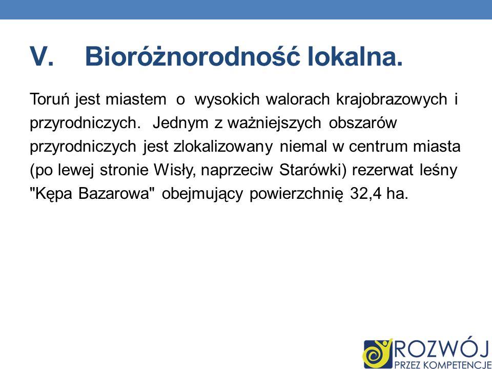 V.Bioróżnorodność lokalna. Toruń jest miastem o wysokich walorach krajobrazowych i przyrodniczych. Jednym z ważniejszych obszarów przyrodniczych jest