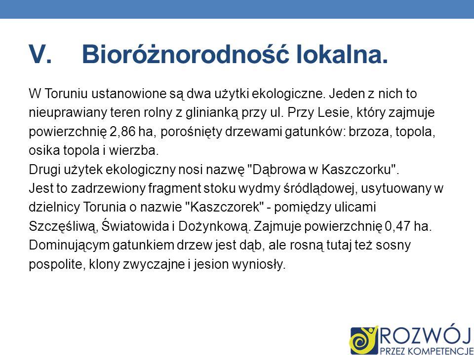 V.Bioróżnorodność lokalna. W Toruniu ustanowione są dwa użytki ekologiczne. Jeden z nich to nieuprawiany teren rolny z glinianką przy ul. Przy Lesie,