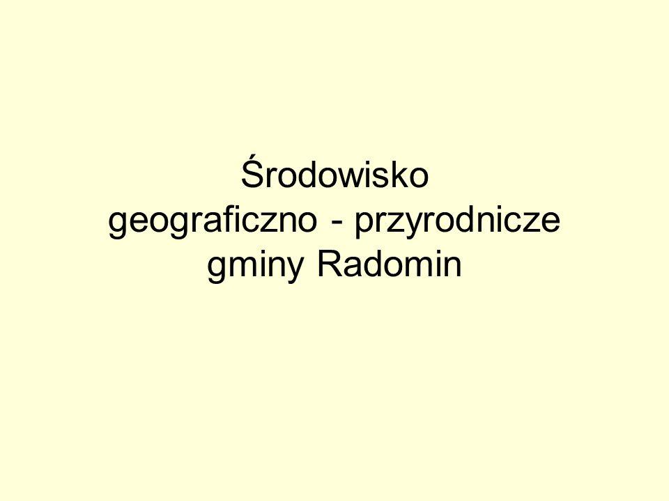 Środowisko geograficzno - przyrodnicze gminy Radomin