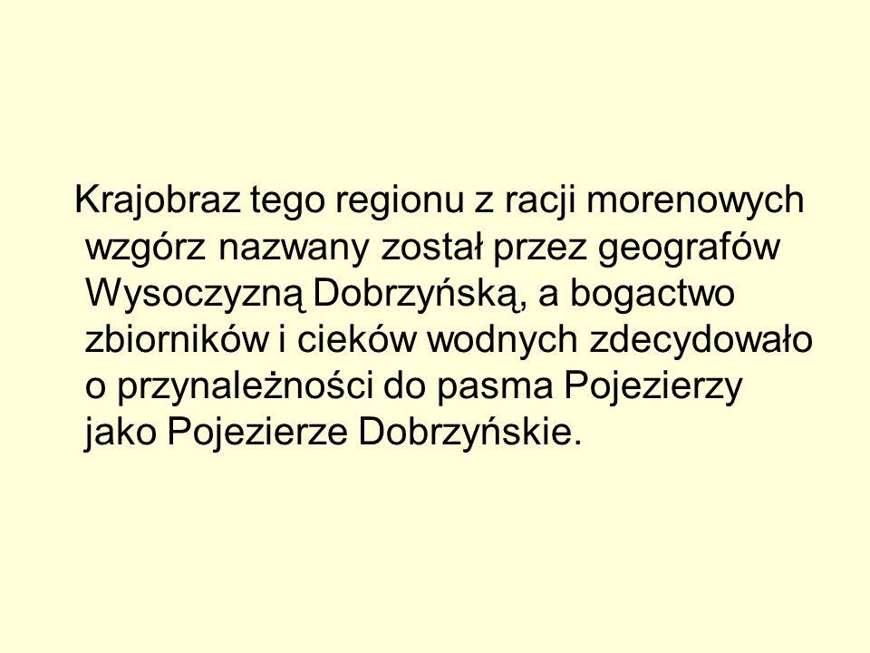 Krajobraz tego regionu z racji morenowych wzgórz nazwany został przez geografów Wysoczyzną Dobrzyńską, a bogactwo zbiorników i cieków wodnych zdecydow