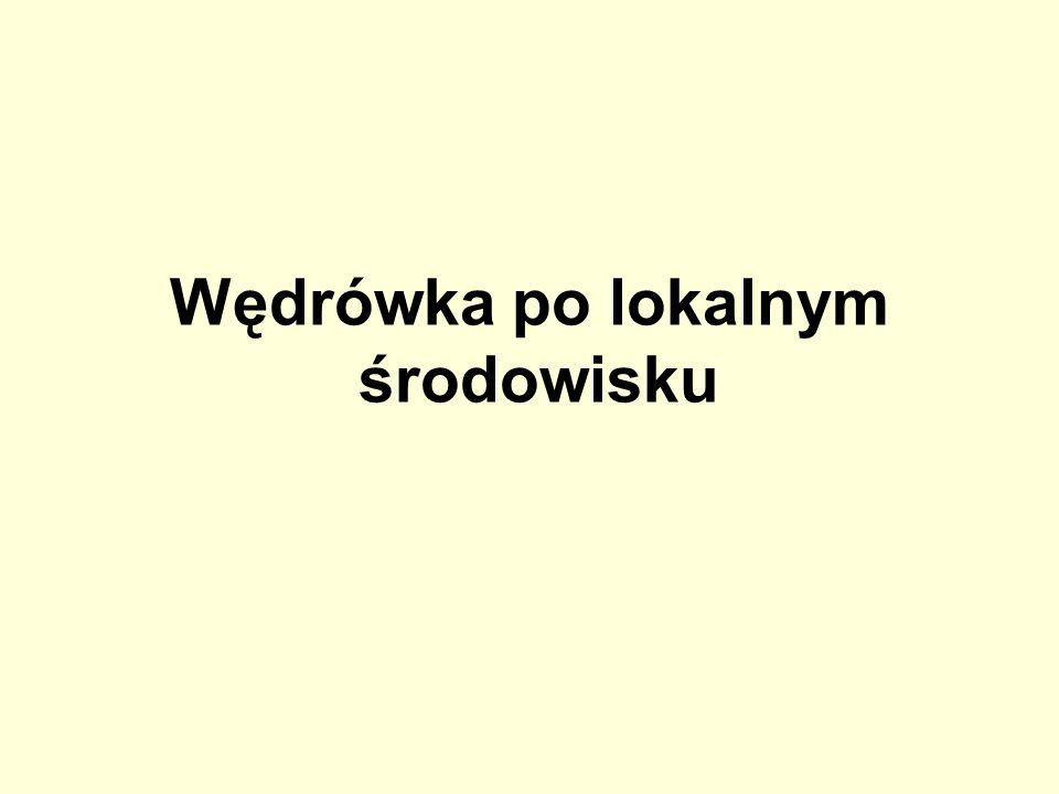 Gmina Radomin