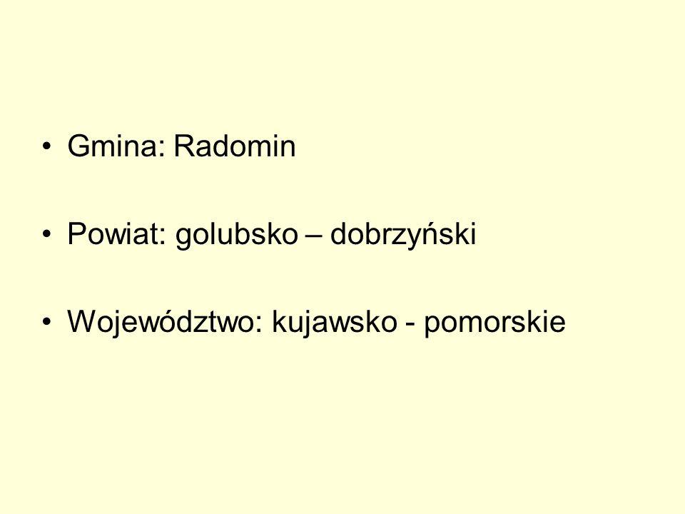 Gmina Radomin powstała w roku 1973 z połączenia kilku mniejszych jednostek terytorialnych zwanych Gromadzkimi Radami Narodowymi.