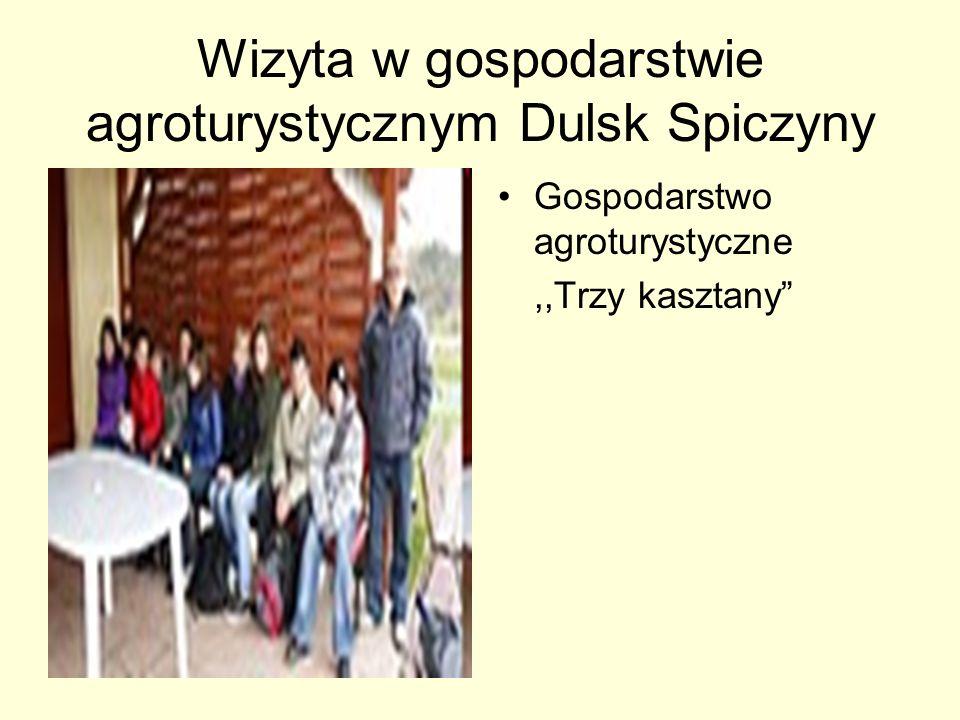 Wizyta w gospodarstwie agroturystycznym Dulsk Spiczyny Gospodarstwo agroturystyczne,,Trzy kasztany