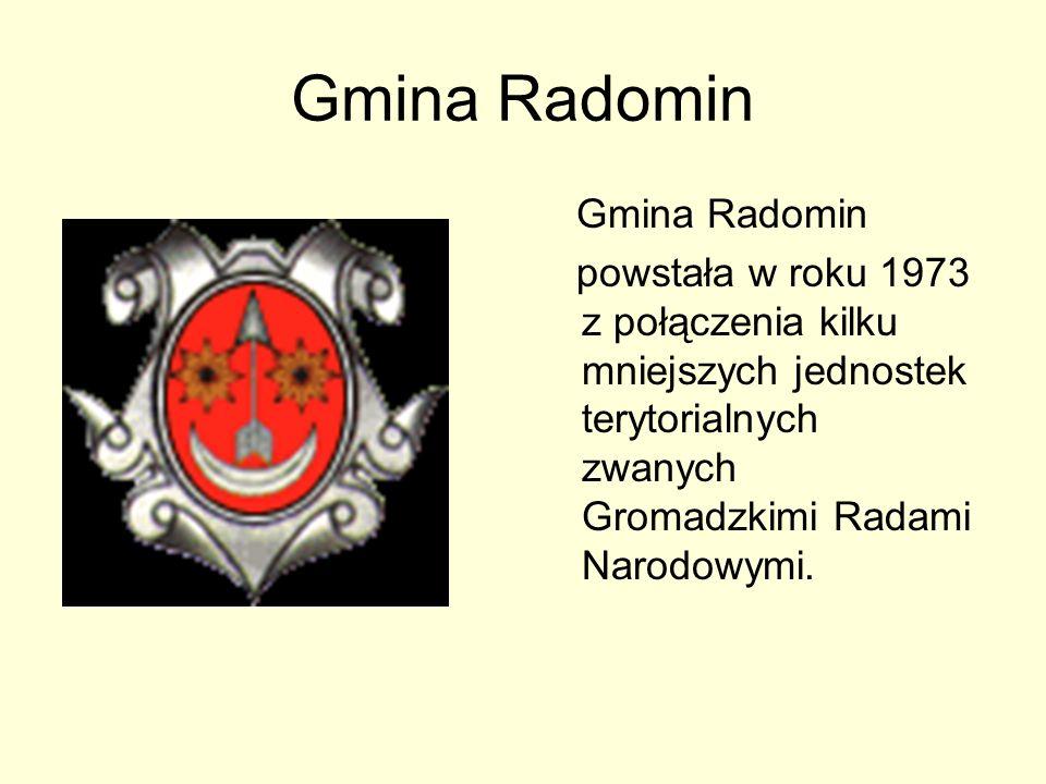 Gmina Radomin graniczy z czterema innymi gminami: Gminą Golub – Dobrzyń Gminą Wąpielsk Gminą Brzuze Gminą Zbójno