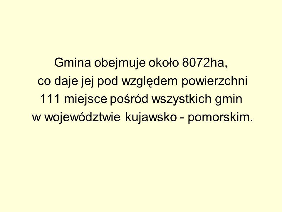 Gmina obejmuje około 8072ha, co daje jej pod względem powierzchni 111 miejsce pośród wszystkich gmin w województwie kujawsko - pomorskim.