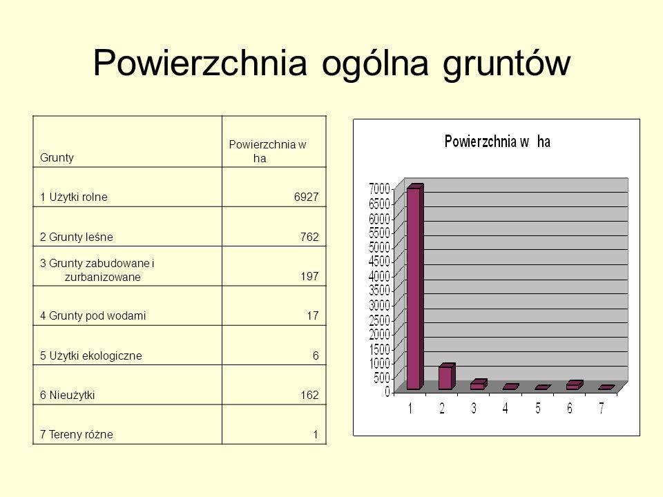 Materiały wspomagające przy tworzeniu prezentacji: Wywiady Internet Foldery o Gminie Radomin, parafii Płonne i Dulsk Książka:,,Gmina Radomin.