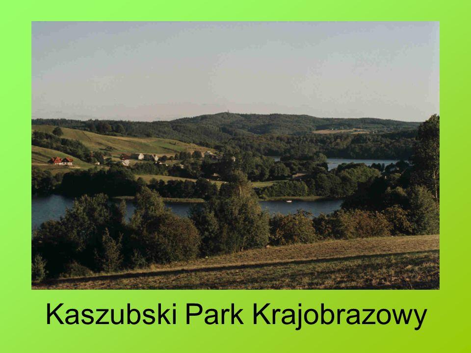 Park Krajobrazowy Dolina Słupi Park Krajobrazowy Dolina Słupi został utworzony w 1981 roku, w chwili obecnej jest jednym z dziewięciu parków krajobrazowych województwa pomorskiego.