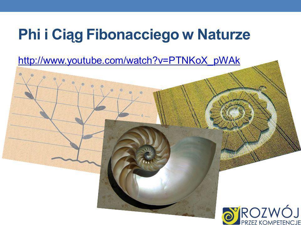 Ciąg Fibonacciego należy do ulubionych ciągów spotykanych w przyrodzie – można go odnaleźć w wielu jej aspektach Rozmnażanie się króliczków jest przyk