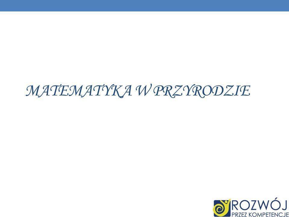 DANE INFORMACYJNE (DO UZUPEŁNIENIA) ID grupy: B5 Lokalizacja: Instytut Matematyki, Uniwersytet w Białymstoku Opiekun: dr Marcin Makowski Kompetencja: