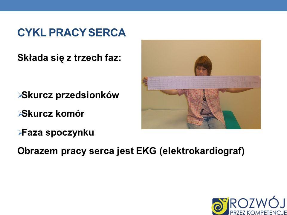 CYKL PRACY SERCA Składa się z trzech faz: Skurcz przedsionków Skurcz komór Faza spoczynku Obrazem pracy serca jest EKG (elektrokardiograf)