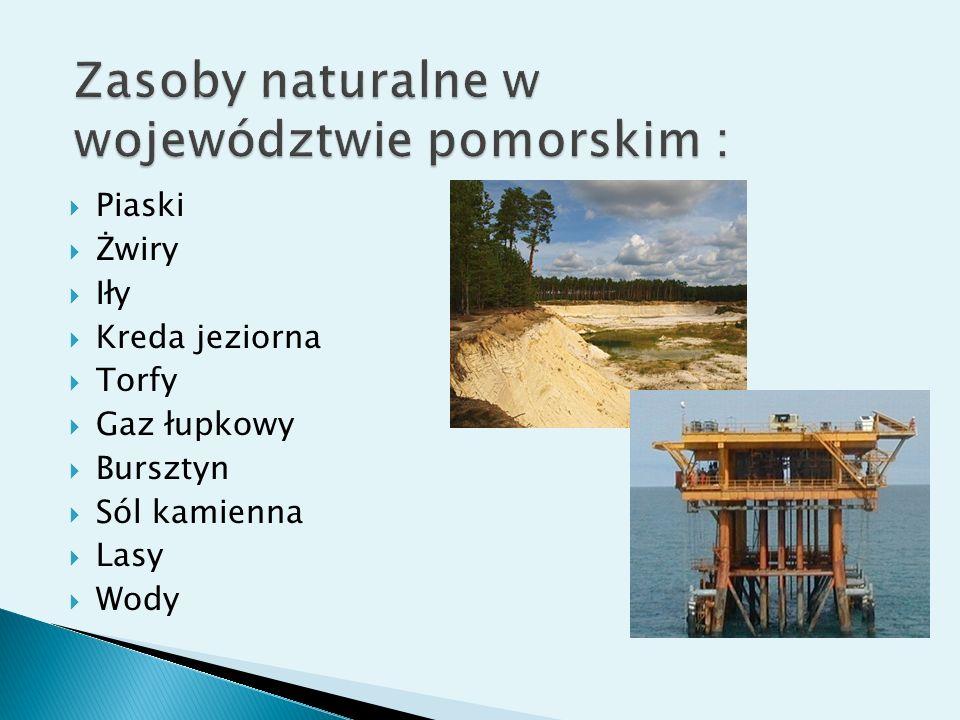 Piaski Żwiry Iły Kreda jeziorna Torfy Gaz łupkowy Bursztyn Sól kamienna Lasy Wody