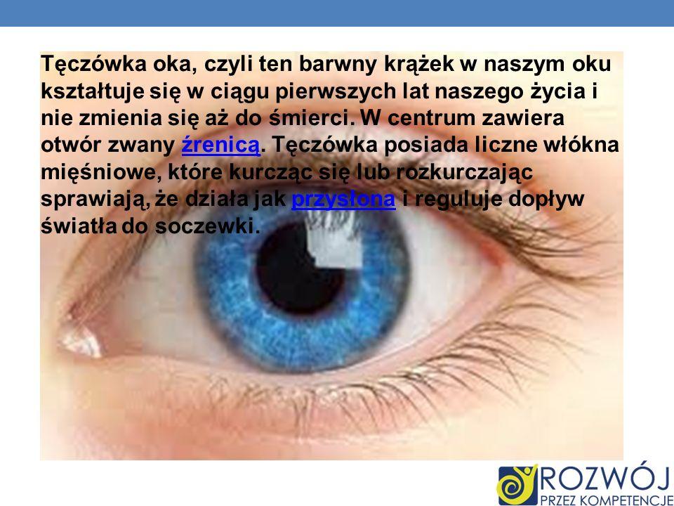 Tęczówka oka, czyli ten barwny krążek w naszym oku kształtuje się w ciągu pierwszych lat naszego życia i nie zmienia się aż do śmierci. W centrum zawi