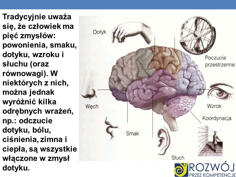 Tradycyjnie uważa się, że człowiek ma pięć zmysłów: powonienia, smaku, dotyku, wzroku i słuchu (oraz równowagi). W niektórych z nich, można jednak wyr