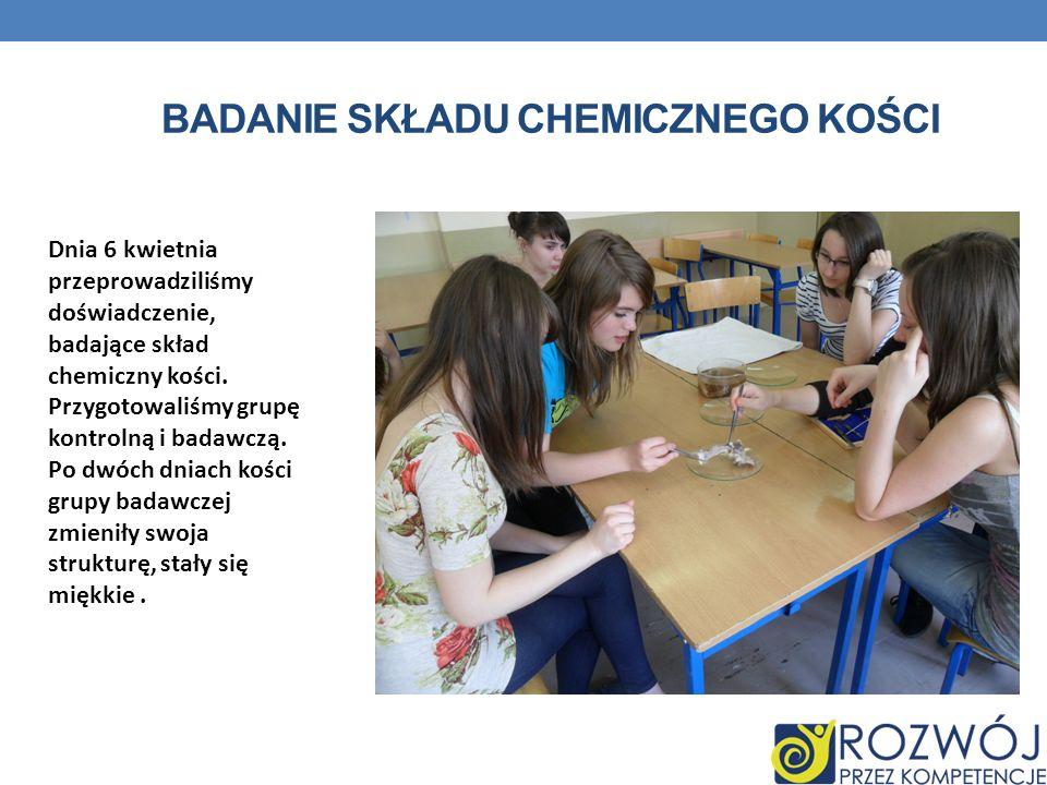 BADANIE SKŁADU CHEMICZNEGO KOŚCI Dnia 6 kwietnia przeprowadziliśmy doświadczenie, badające skład chemiczny kości. Przygotowaliśmy grupę kontrolną i ba