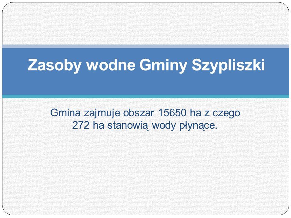 Zasoby wodne Gminy Szypliszki Gmina zajmuje obszar 15650 ha z czego 272 ha stanowią wody płynące.