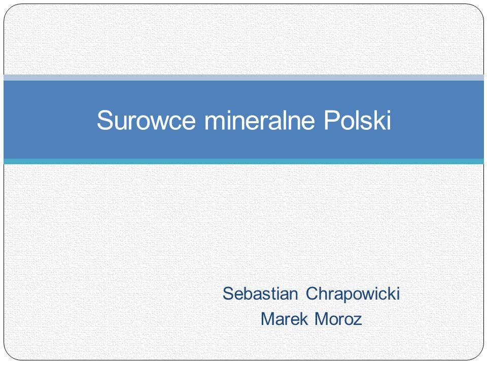 Sebastian Chrapowicki Marek Moroz Surowce mineralne Polski