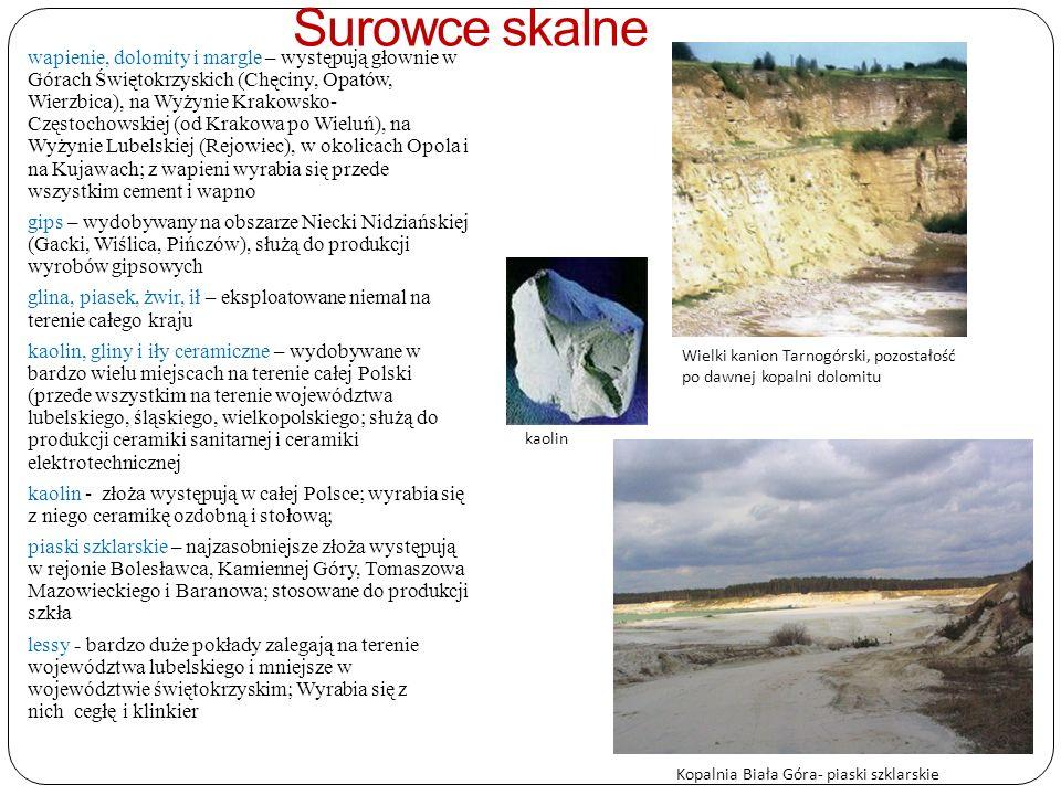 Surowce skalne wapienie, dolomity i margle – występują głownie w Górach Świętokrzyskich (Chęciny, Opatów, Wierzbica), na Wyżynie Krakowsko- Częstochowskiej (od Krakowa po Wieluń), na Wyżynie Lubelskiej (Rejowiec), w okolicach Opola i na Kujawach; z wapieni wyrabia się przede wszystkim cement i wapno gips – wydobywany na obszarze Niecki Nidziańskiej (Gacki, Wiślica, Pińczów), służą do produkcji wyrobów gipsowych glina, piasek, żwir, ił – eksploatowane niemal na terenie całego kraju kaolin, gliny i iły ceramiczne – wydobywane w bardzo wielu miejscach na terenie całej Polski (przede wszystkim na terenie województwa lubelskiego, śląskiego, wielkopolskiego; służą do produkcji ceramiki sanitarnej i ceramiki elektrotechnicznej kaolin - złoża występują w całej Polsce; wyrabia się z niego ceramikę ozdobną i stołową; piaski szklarskie – najzasobniejsze złoża występują w rejonie Bolesławca, Kamiennej Góry, Tomaszowa Mazowieckiego i Baranowa; stosowane do produkcji szkła lessy - bardzo duże pokłady zalegają na terenie województwa lubelskiego i mniejsze w województwie świętokrzyskim; Wyrabia się z nich cegłę i klinkier Wielki kanion Tarnogórski, pozostałość po dawnej kopalni dolomitu kaolin Kopalnia Biała Góra- piaski szklarskie