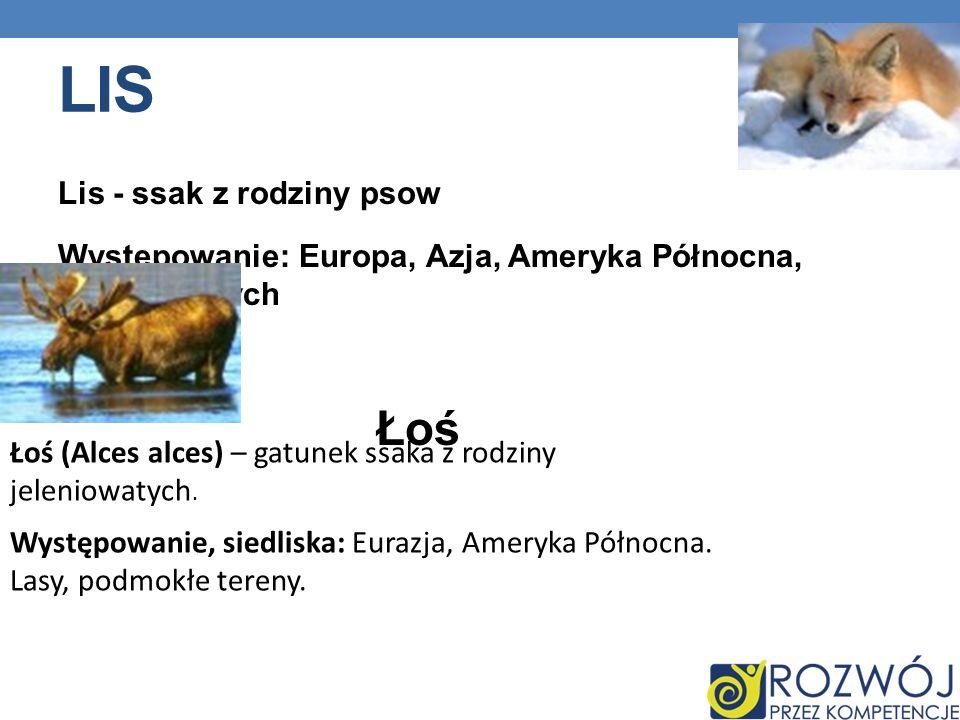 LIS Lis - ssak z rodziny psow Występowanie: Europa, Azja, Ameryka Północna, Australiaatych Łoś Łoś (Alces alces) – gatunek ssaka z rodziny jeleniowatych.