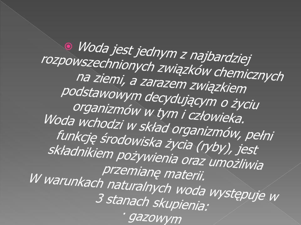 *Wody alkaliczne (zasadowe): rzęsa trójrowkowa, rzęsa wielokorzeniowa.