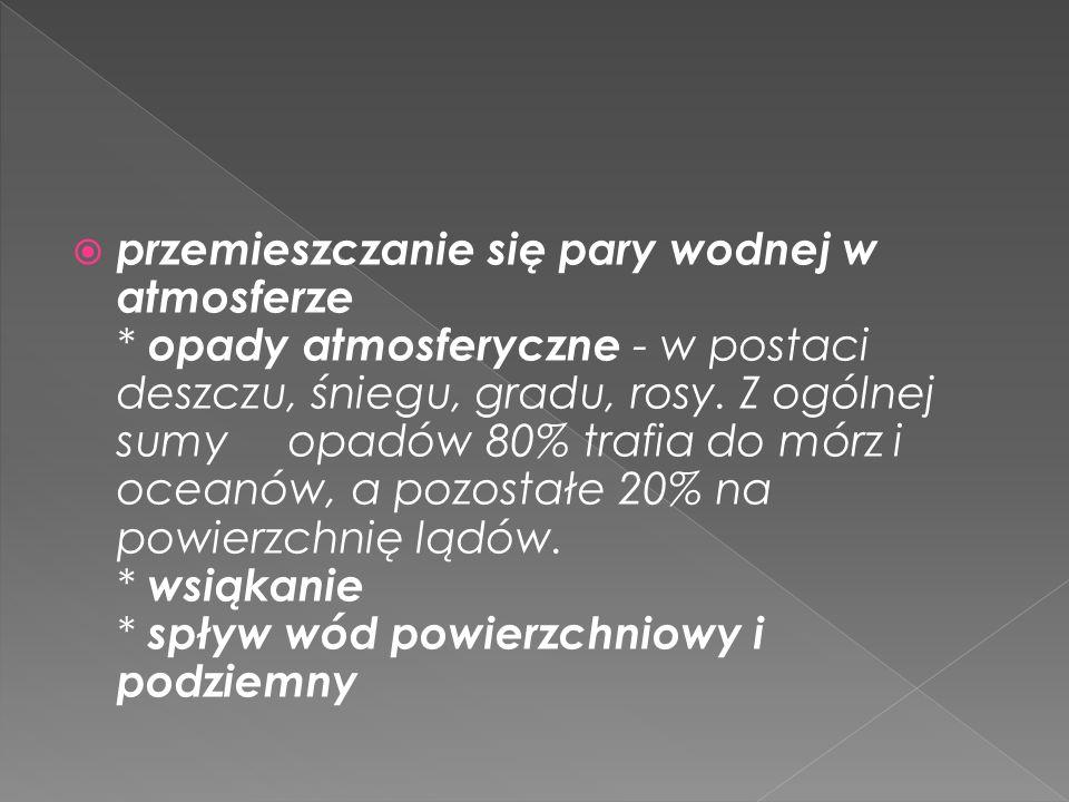 Stan wód w Polsce Monitoring stanu wód w Polsce wykazywał, że większość badanych wód nie odpowiadała normom.