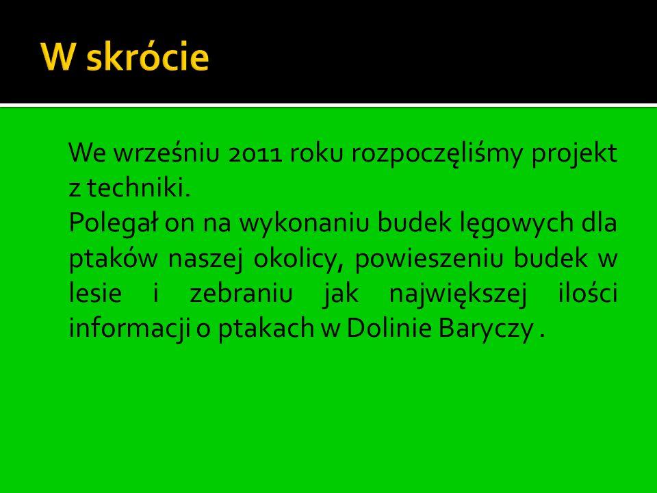 We wrześniu 2011 roku rozpoczęliśmy projekt z techniki.