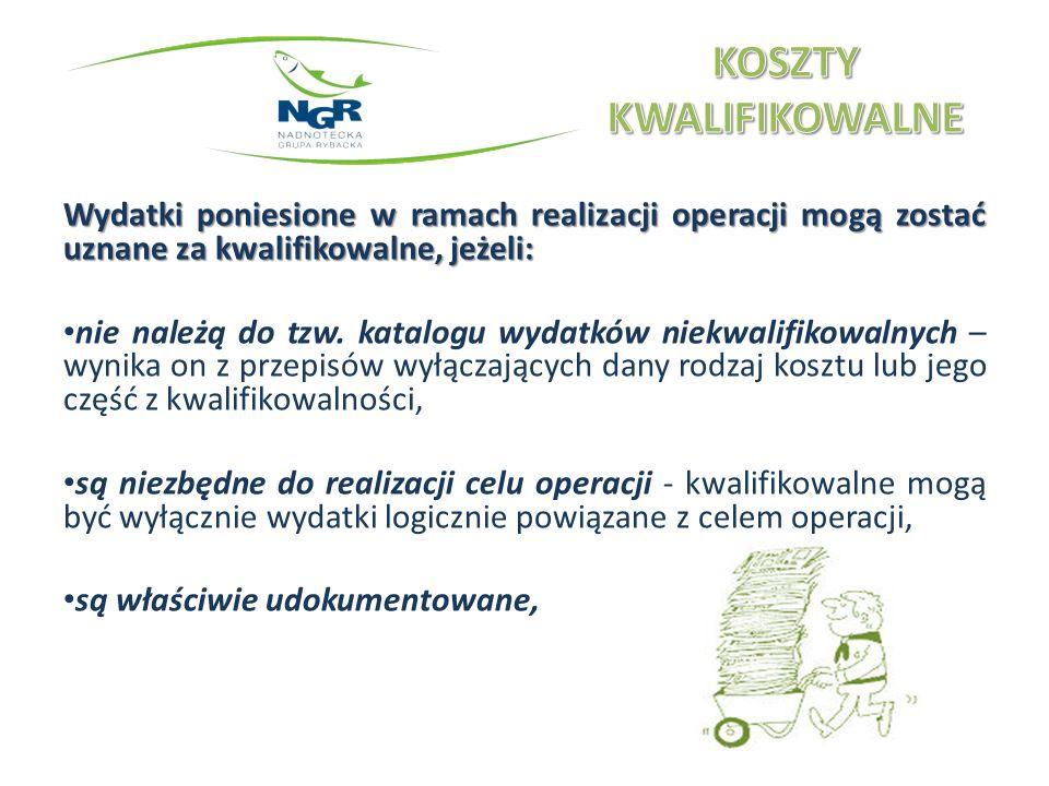 Wydatki poniesione w ramach realizacji operacji mogą zostać uznane za kwalifikowalne, jeżeli: beneficjent wywiąże się z wymogów formalnych związanych z planowaną operacją lub wysokością ponoszonych wydatków (prawo zamówień publicznych - o ile dotyczy beneficjenta na podstawie odrębnych przepisów), beneficjent przestrzega podstawowych założeń polityk rozwojowych UE (promocja wparcia UE, ułatwianie dostępu dla niepełnosprawnych i wykluczonych, równouprawnienie, eliminowanie rasizmu, zachowanie zasad wolnego obrotu gospodarczego i poszanowania konkurencyjności).