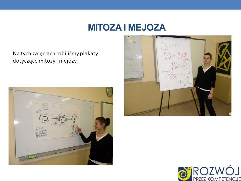 MITOZA I MEJOZA Na tych zajęciach robiliśmy plakaty dotyczące mitozy i mejozy.
