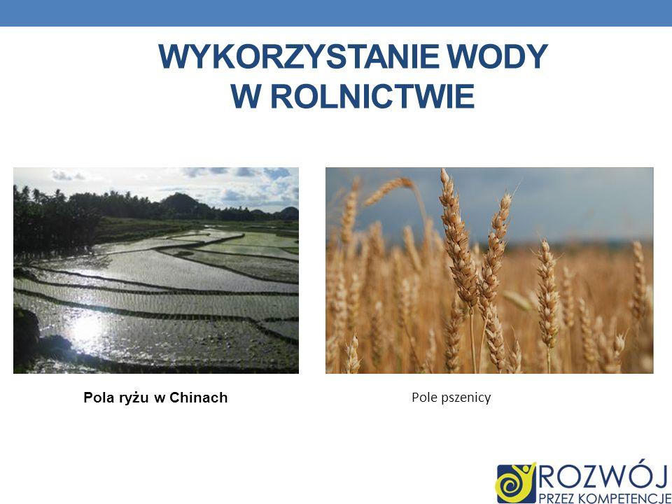 WYKORZYSTANIE WODY W ROLNICTWIE Pola ryżu w Chinach Pole pszenicy