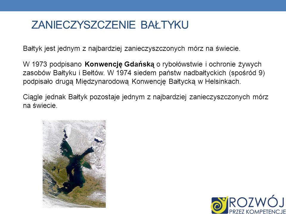 ZANIECZYSZCZENIE BAŁTYKU Bałtyk jest jednym z najbardziej zanieczyszczonych mórz na świecie.