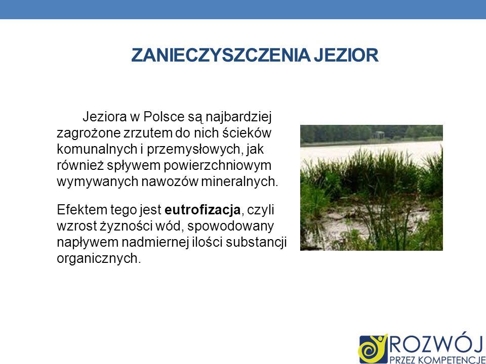 ZANIECZYSZCZENIA JEZIOR Jeziora w Polsce są najbardziej zagrożone zrzutem do nich ścieków komunalnych i przemysłowych, jak również spływem powierzchniowym wymywanych nawozów mineralnych.