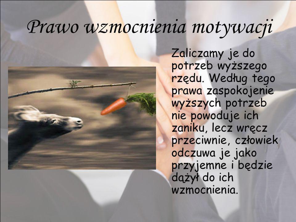 Kto jest odpowiedzialny za zakup produktów spożywczych i codziennego użytku w polskich rodzinach?