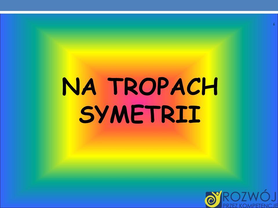 , NA TROPACH SYMETRII
