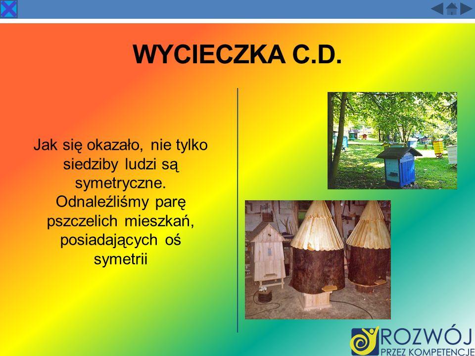 WYCIECZKA C.D. Jak się okazało, nie tylko siedziby ludzi są symetryczne. Odnaleźliśmy parę pszczelich mieszkań, posiadających oś symetrii