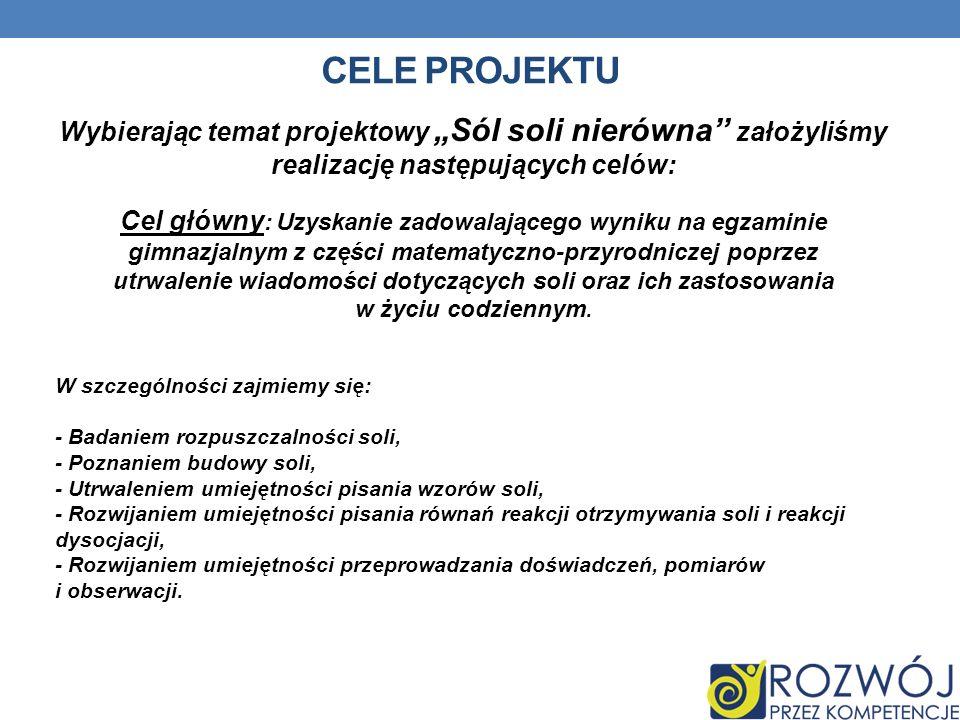 CELE PROJEKTU Wybierając temat projektowy Sól soli nierówna założyliśmy realizację następujących celów: Cel główny : Uzyskanie zadowalającego wyniku n