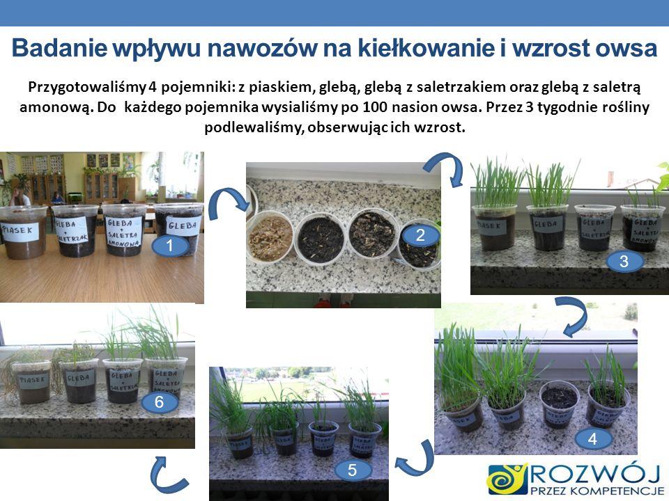 Badanie wpływu nawozów na kiełkowanie i wzrost owsa 1 5 4 3 2 5 6 Przygotowaliśmy 4 pojemniki: z piaskiem, glebą, glebą z saletrzakiem oraz glebą z sa
