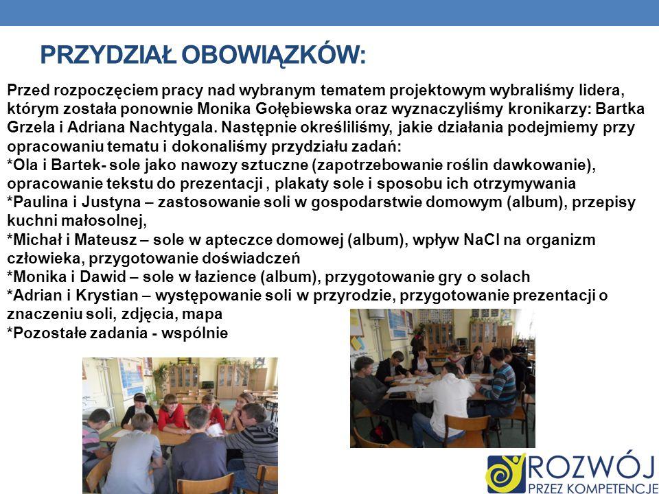PRZYDZIAŁ OBOWIĄZKÓW: Przed rozpoczęciem pracy nad wybranym tematem projektowym wybraliśmy lidera, którym została ponownie Monika Gołębiewska oraz wyz