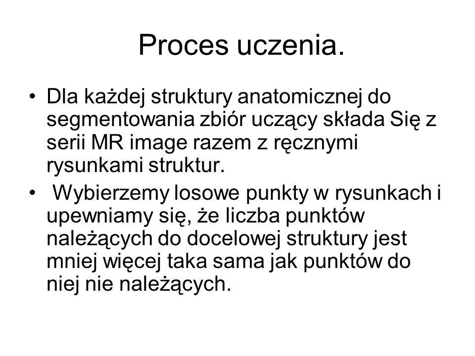 Proces uczenia.